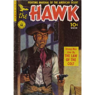 Impression photo sur toile, The Hawk , 50 cm x 70 cm
