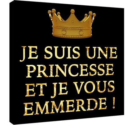 Je suis une Princesse et je vous emmerde.