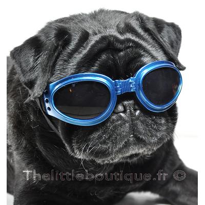 Lunettes pour chiens, Bleue, avec dragonne