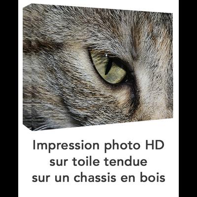 IMPRESSION_SUR_TOILE_PERSONNALISEE