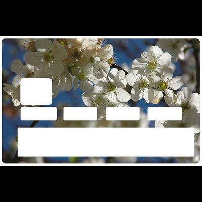 Sticker pour carte bancaire, Les Fleurs de cerisiers