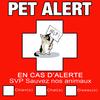 sticker-pet-alerte-animaux-chat-deco-idees