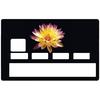 sticker-carte-bancaire-credit-card-stickers-fleur-noir