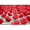 the-little-boutique-ottmar-horl-rose-2