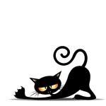chat vampire allongé 2