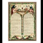 declaration-des-droits-de-l-homme-thelittleboutique_1 50X70