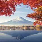 japon-mont-fuji-sticker-boite-aux-lettre-thelittleboutique