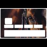 OEIL-cheval-stickercb-sticker-carte-bancaire-1