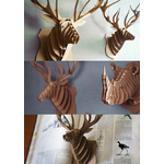 collection-animatomy-the-little-boutique-1
