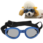 lunette-pour-chien-the-little-boutique-fr