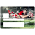 sticker-carte-bancaire-electron-rugby-the-little-sticker