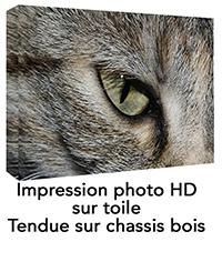 pm-IMPRESSION_SUR_TOILE_PERSONNALISEE