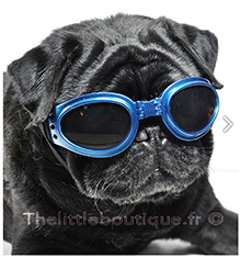 pm lunette-pour-chien_THE_LITTLEBOUTIQUE