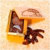 fruits-confits-orangettes-chocolat-caisson-T1