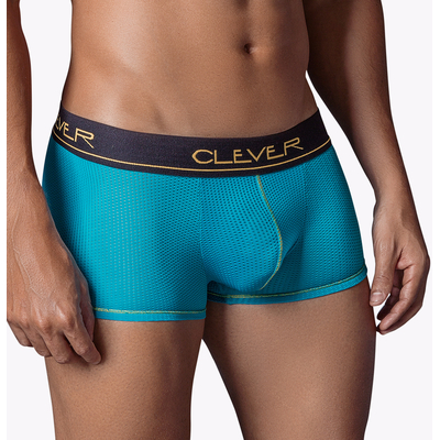 Boxer World Citizen de Clever