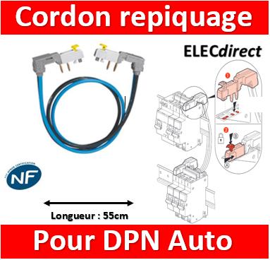 Cordon de repiquage Legrand section 10 mm² pour bornes à vis Lot comprenant 1 p