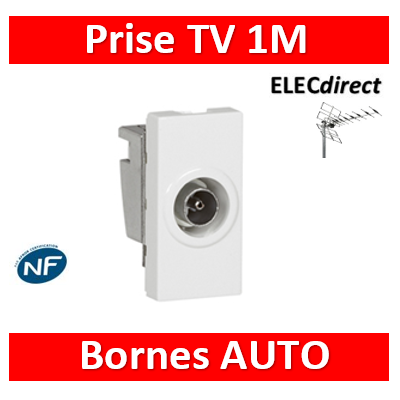 Legrand Mosaic - Prise TV simple - 1 module - Mâle - 078793
