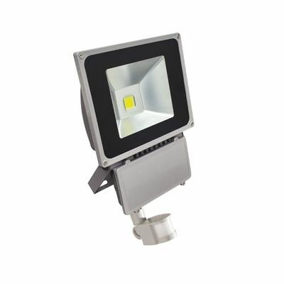 Vision EL - Projecteur Exterieur LED Gris avec Détecteur 80W 3000°K - 8040