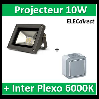Vision EL - Projecteur LED 10W Gris IP65 + V.V. Plexo Legrand - 80011+069711