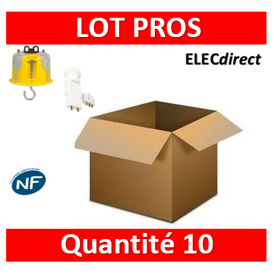 Legrand Batibox - Kit point de centre DCL BBC + Douille/Fiche SIB - 089377x10+11127x10