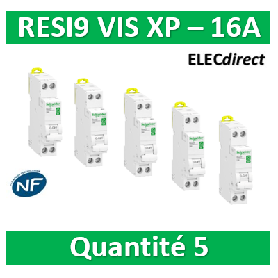SCHNEIDER - LOT PROS - DISJONCTEUR DUOLINE RESI9 XP (à VIS) - 16A - VIS/VIS - R9PFC616x5