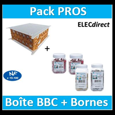 SIB - Boîte pavillonnaire BBC 200x200x85 + Bornes - 2, 3, 4 et 5 trous - P32525+bornes