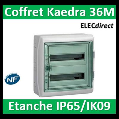 Schneider - Coffret Kaedra 2 rangées 36M - IP65/IK09 - 13965