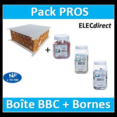SIB - Boîte pavillonnaire BBC 200x200x85 + Bornes - 2, 4, et 8 trous - P32525+bornes