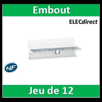 Schneider - Embout cachedent pour peigne jeu de 12 - 21096