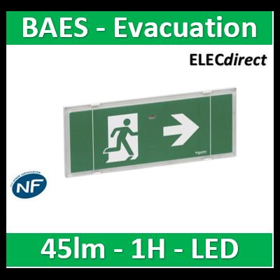 Schneider - Exiway ESI bloc autonome éclairage sécurité, SATI, led, IP42 - OVA58000