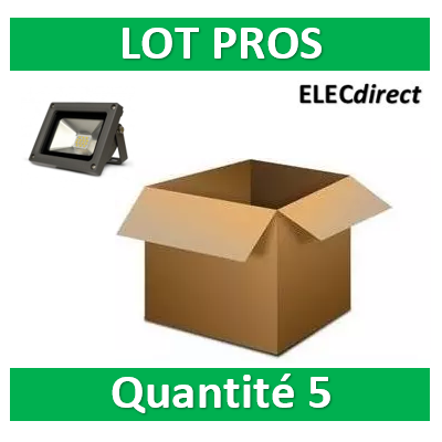 Vision EL - Projecteur LED 10W Gris IP65 - 80011x5