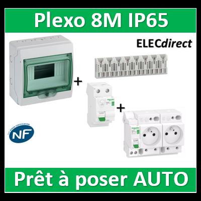 Schneider - coffret étanche - 8M + DPN16A + 2PC 16A + Dif. 40A AC 30mA + répartiteur 8M- 13959+R9ECS616+R9ERC240+R9EXHS08