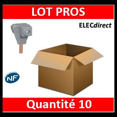 Legrand - Borne de raccordement pour tout peigne - section 6 à 35 mm² - 404906x10