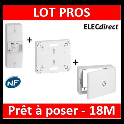 Legrand - Disjoncteur de branchement EDF 18M + platine + habillage + porte - 401051+401191+401189