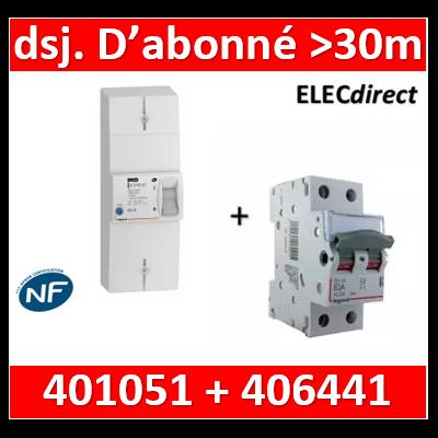 Legrand - Lot pour Disj. d'abonné >30m du tableau électrique - 63A - 406441+401051