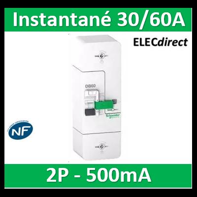 Schneider - Disjoncteur de branchement EDF 60A - fixe -instantané - 500mA - bipolaire - R9FT660