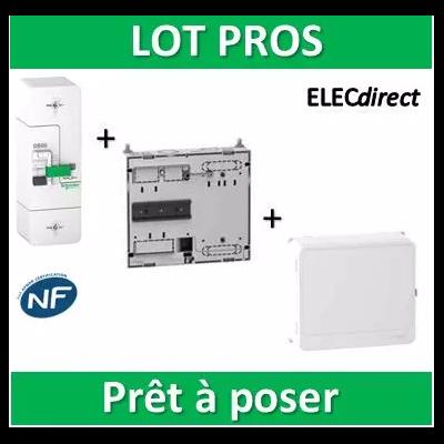 Schneider - Disjoncteur de branchement EDF + platine + habillage + porte - R9FT660+R9H13206+R9H13418