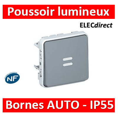 Legrand Plexo - Poussoir NO lumineux composable 10A - 230V - IP55/IK07- 069542