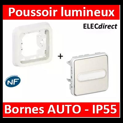 Legrand - Poussoir NO lumineux à porte-étiquette Plexo encastré blanc - 10 A - 069633+069692