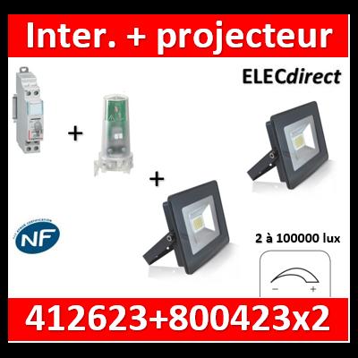Legrand - Interrupteur crépusculaire standard + projecteur LED 20W - 60000°K - 412623+800423x2