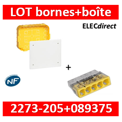 Legrand Batibox - Boîte pour dérivation 230x170x50 + bornes wago 5 trous  - 089375+2273-205