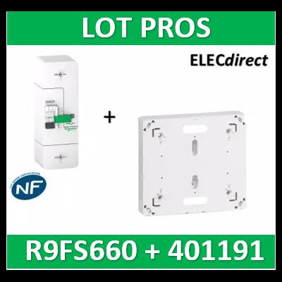 Schneider - Disjoncteur de branchement EDF 60A - fixe -sélectif - 500mA - bipolaire + platine Legrand - R9FS660+401191