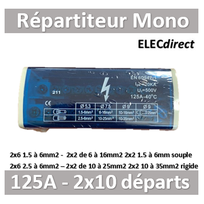 Digital Electric - Répartiteur 125A 2x10 départs - Mono 230V - 41514
