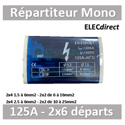 Digital Electric - Répartiteur 125A 2x6 départs - Mono 230V - 41512