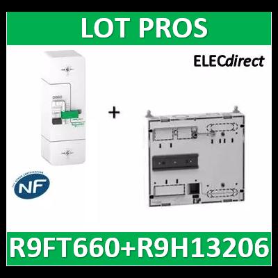 Disjoncteur de branchement EDF 60A instantané + Platine disjocnteur - 500mA - bipolaire - R9FT660+R9H13206