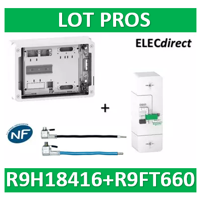 Disjoncteur de branchement EDF 60A instantané + Platine disjoncteur 18M - 500mA - bipolaire - R9FT660+R9H18416