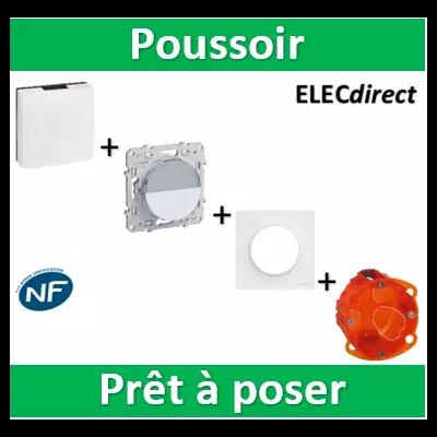 Schneider Odace - Poussoir Porte Etiquette + Carillon 230v Legrand + boîte - S520266+S520702+041651+080101