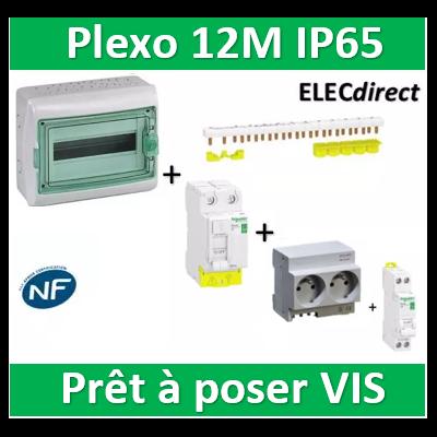 Schneider - coffret étanche - 12M + DPN16A + 2PC 16A + Dif. 40A AC 30mA + répartiteur 10M