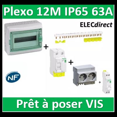 Schneider - coffret étanche - 12M + DPN16A + 2PC 16A + Dif. 63A AC 30mA + répartiteur 10M