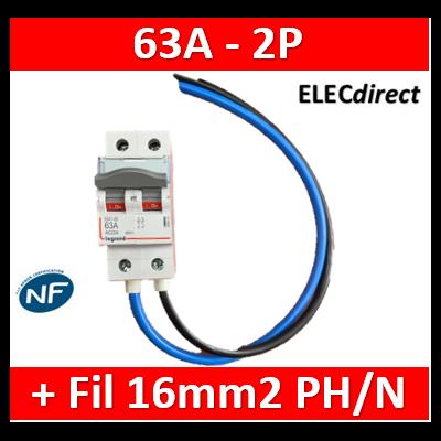 Legrand - DX3 Interrupteur-sectionneur Bipolaire - 63A + fil 16mm2 PH/N 35cm + 2 embouts - 406441